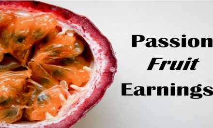 Passion Fruit Earnings in Kenya Can Be Massive