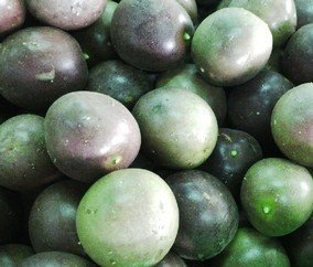 Passion Fruit Varieties in the World