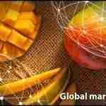 Mango 2019 market Overview