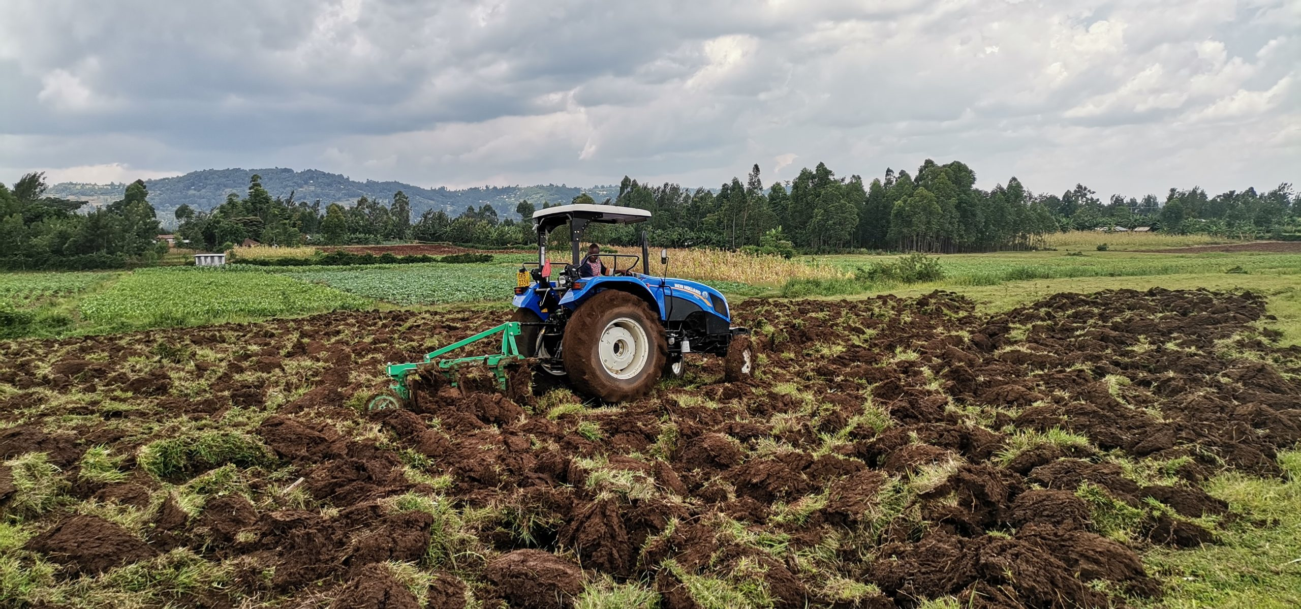 A tractor ploughing land