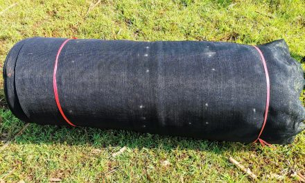 Black Shade Net for Sale: How Shade Cloth Protect Plants
