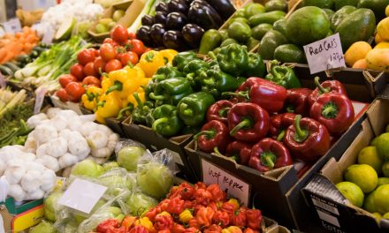 Amazing: How the COLOUR of your diet could protect against Alzheimer's