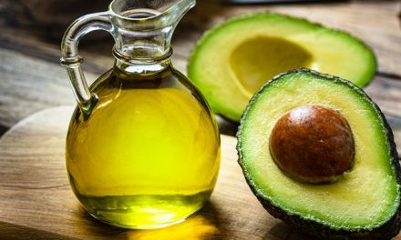 What Research says About Avocado Oil Benefits to Cyclists