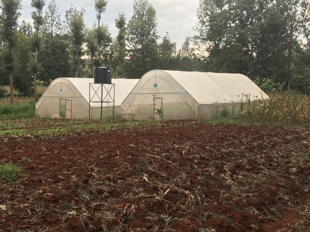 Small Greenhouses for small farmers in Kenya